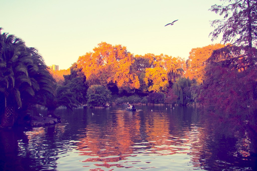 Rowing on the lake in Parc de la Ciutadella in Barcelona
