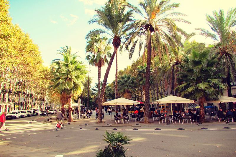Raval Neighbourhood Guide Barcelona - Ben Holbrook_opt