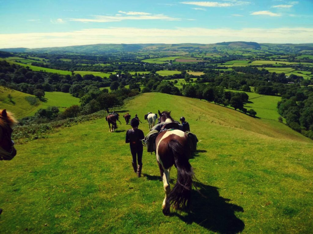 Guided horse riding lessons in Wales
