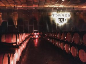 Torres wine cellars in Penedes outside of Barcelona