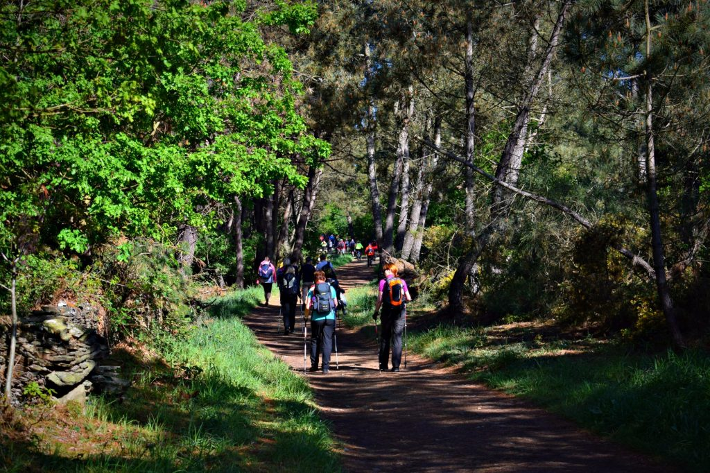 Groups of Hikers on The Camino