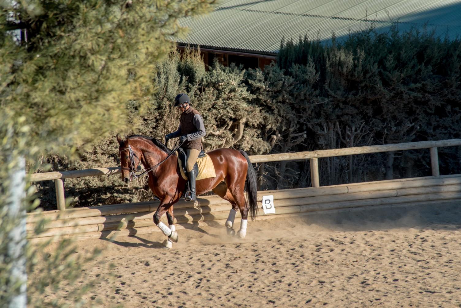 Horse riding in Montjuic Barcelona