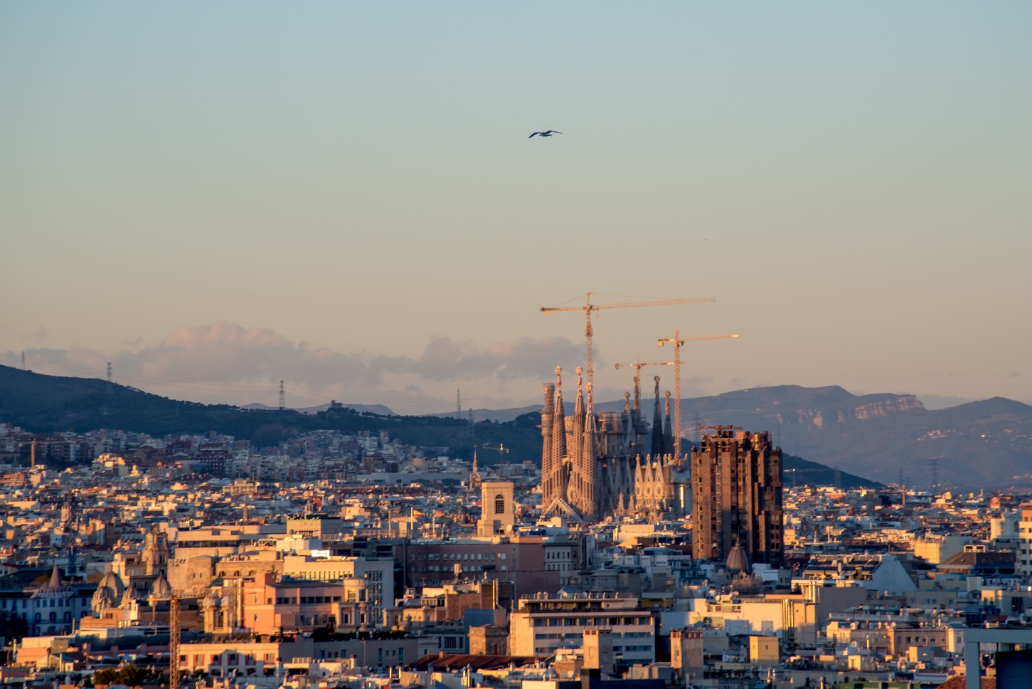 Views of La Sagrada Familia at sunset in Barcelona
