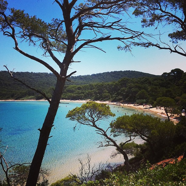 The island of Porquerolles, Hyeres, Provence, South France