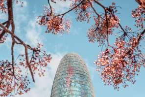 Torre Glòries Barcelona / Torre Agbar / by Ben Holbrook