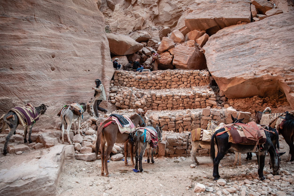 Petra horse and donkey taxi riders taking a break - by Ben Holbrook from DriftwoodJournals.com