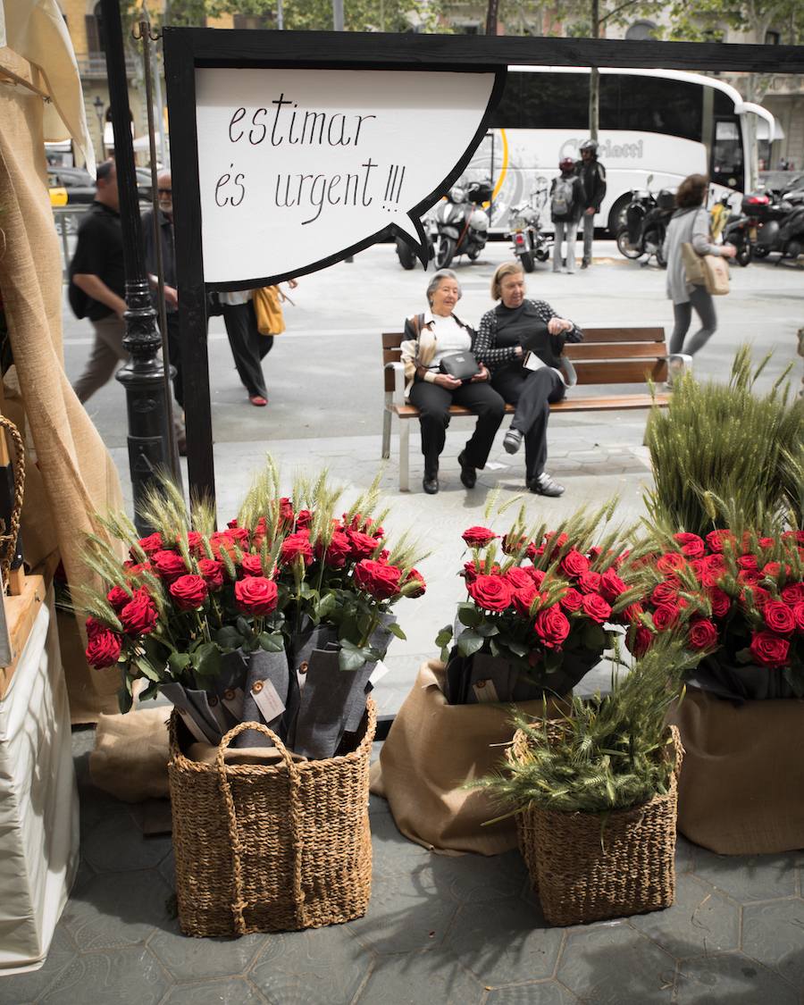 Rose sellers during Sant Jordi Day Barcelona ~ By Ben Holbrook from DriftwoodJournals.com14