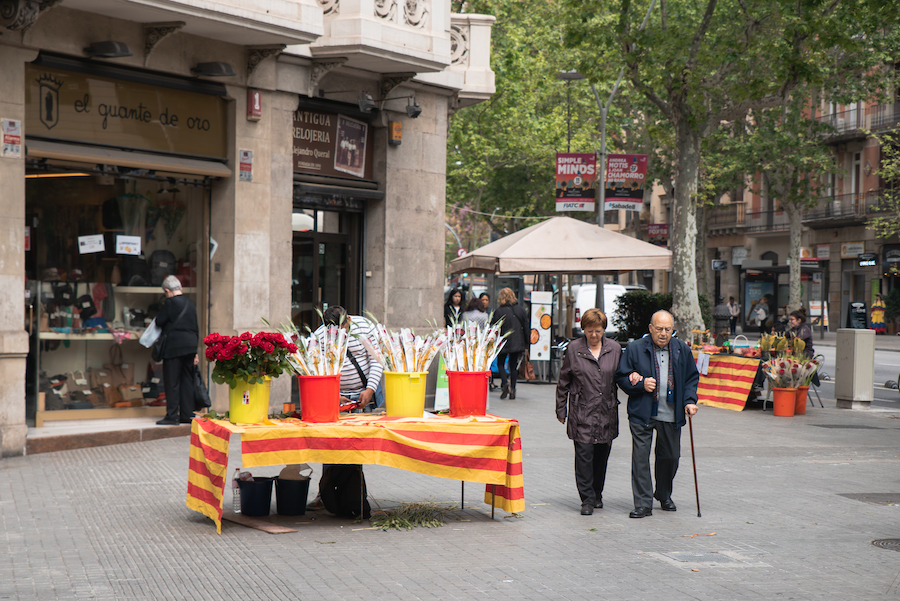 Sant jordi Day Roses and Book Shops in Barcelona - By Ben Holbrook from DriftwoodJournals.com-6871