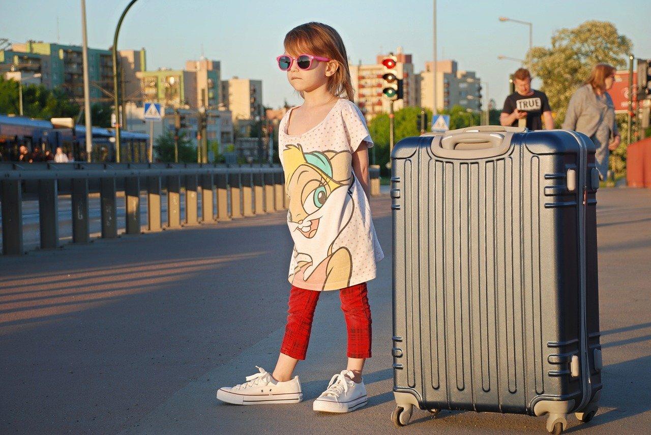 Large travel Wheeled Suitcase
